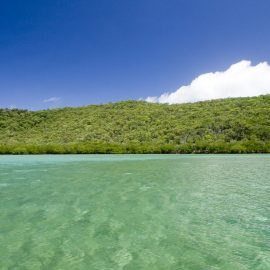 Monitoring and reducing governance risks facing the GBR