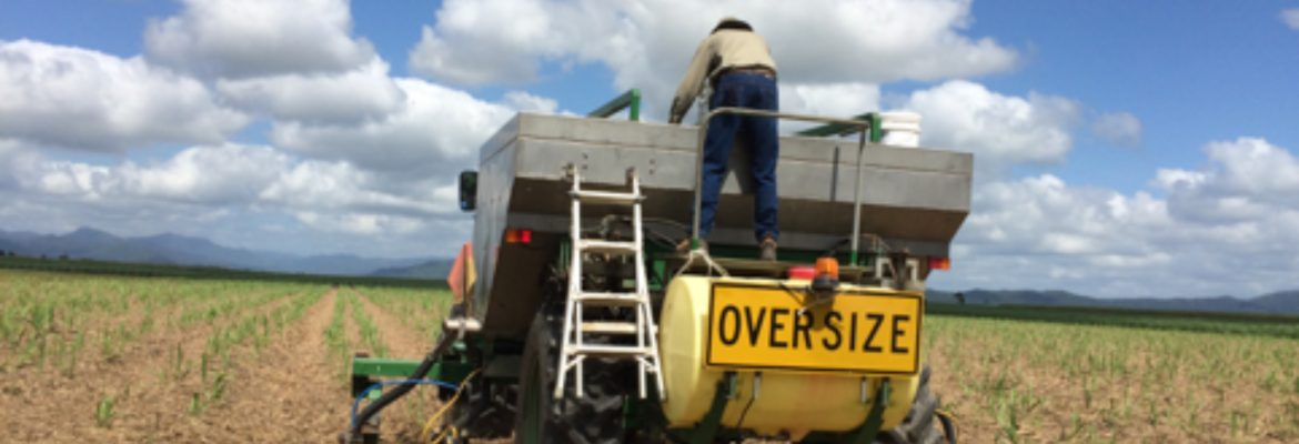 Less waste, less run-off: Reducing nitrogen overuse with Enhanced Efficiency Fertilizers